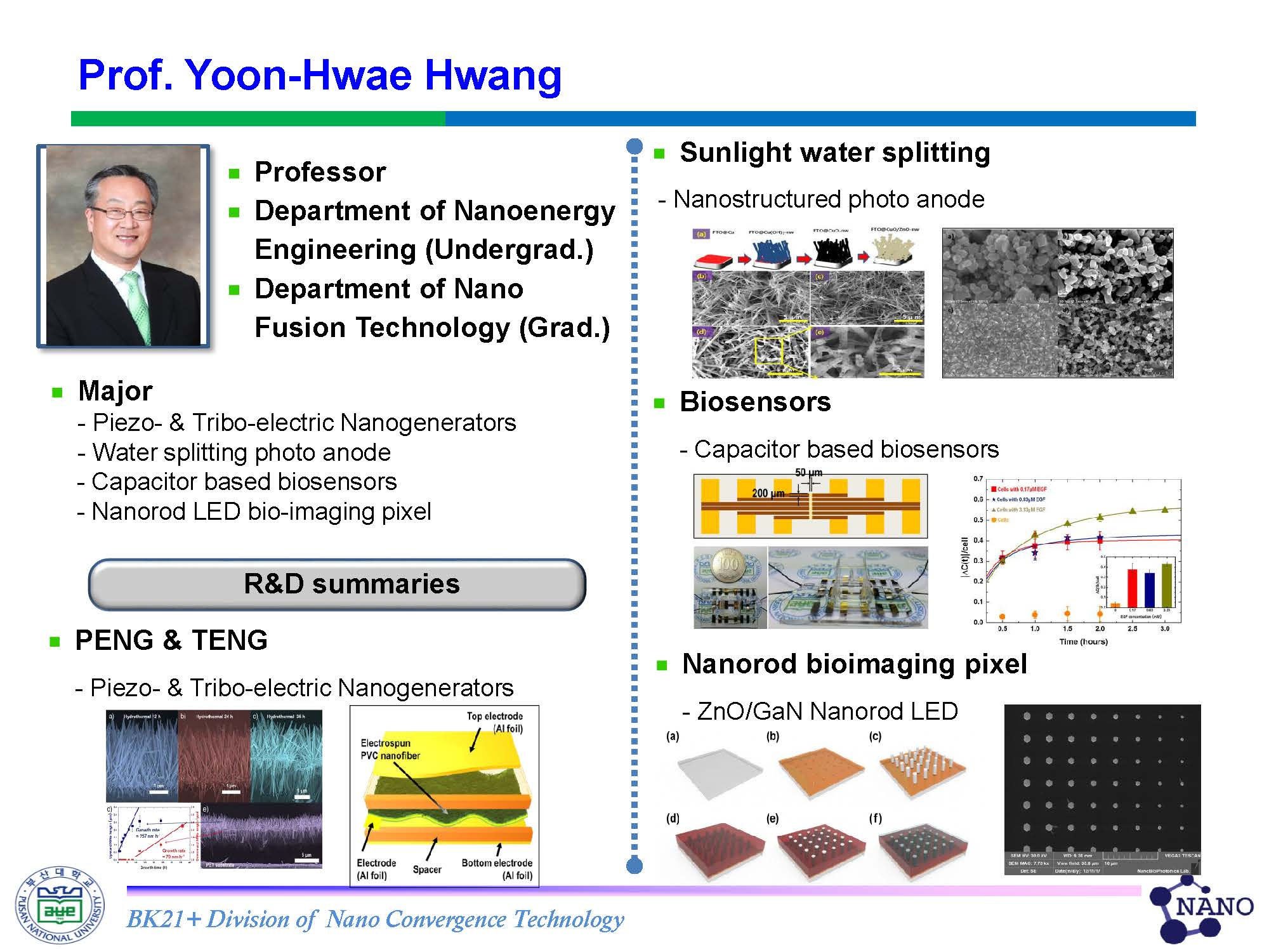 Hwang, Yoon-Hwae Nanoenergy Department_research fields_페이지_2.jpg